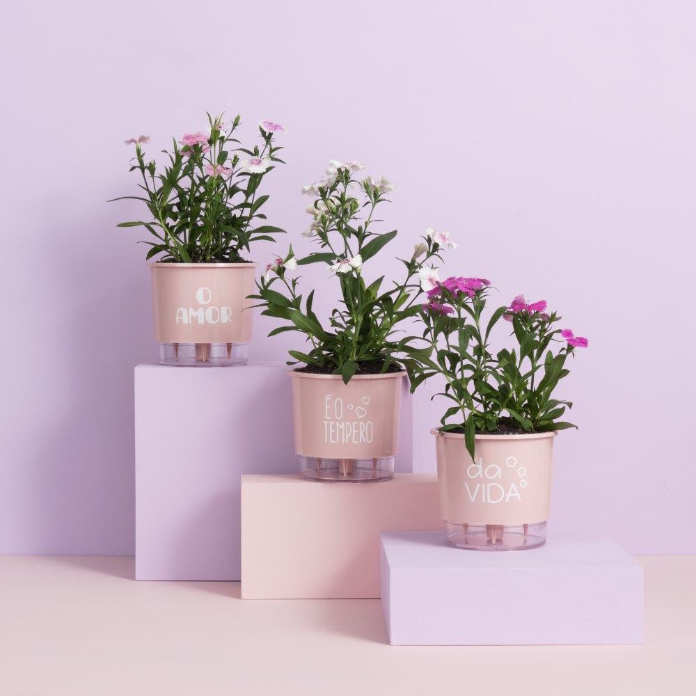 Kit 3 Vasos Autoirrigáveis Pequenos N02 12cm x 11cm O Amor é o Tempero da Vida Rosa Quartzo