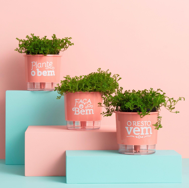 Kit 3 Vasos Autoirrigáveis Pequenos N02 12cm x 11cm Plante o Bem Coral