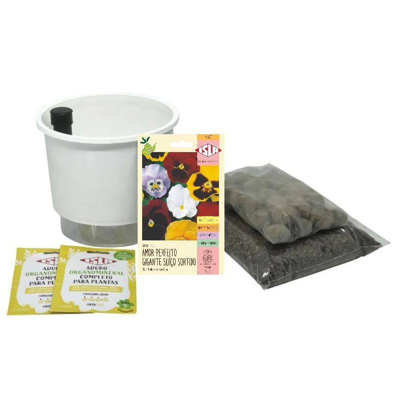 Kit Completo Inicial: Meu Primeiro Plantio de Amor Perfeito com Vaso Branco + Manual de plantio