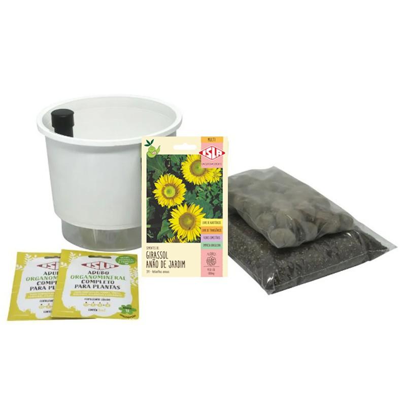 Kit Completo Inicial: Meu Primeiro Plantio de Girassol com Vaso Branco + Manual de plantio
