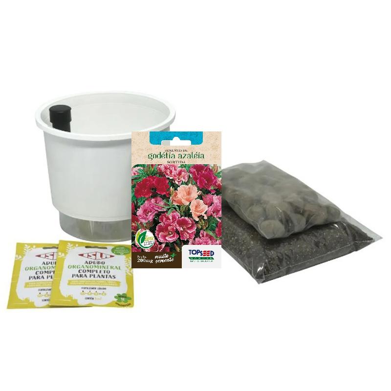 Kit Completo Inicial: Meu Primeiro Plantio de Godétia Azaléia com Vaso Branco + Manual de plantio