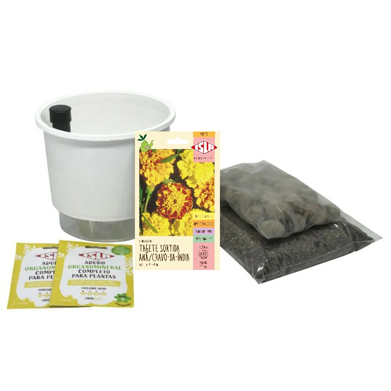 Kit Completo Inicial: Meu Primeiro Plantio de Tagete com Vaso Branco + Manual de plantio