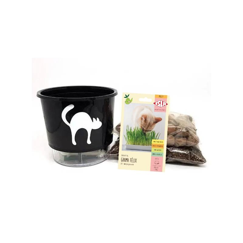 Kit Completo para plantio de Grama dos Gatos