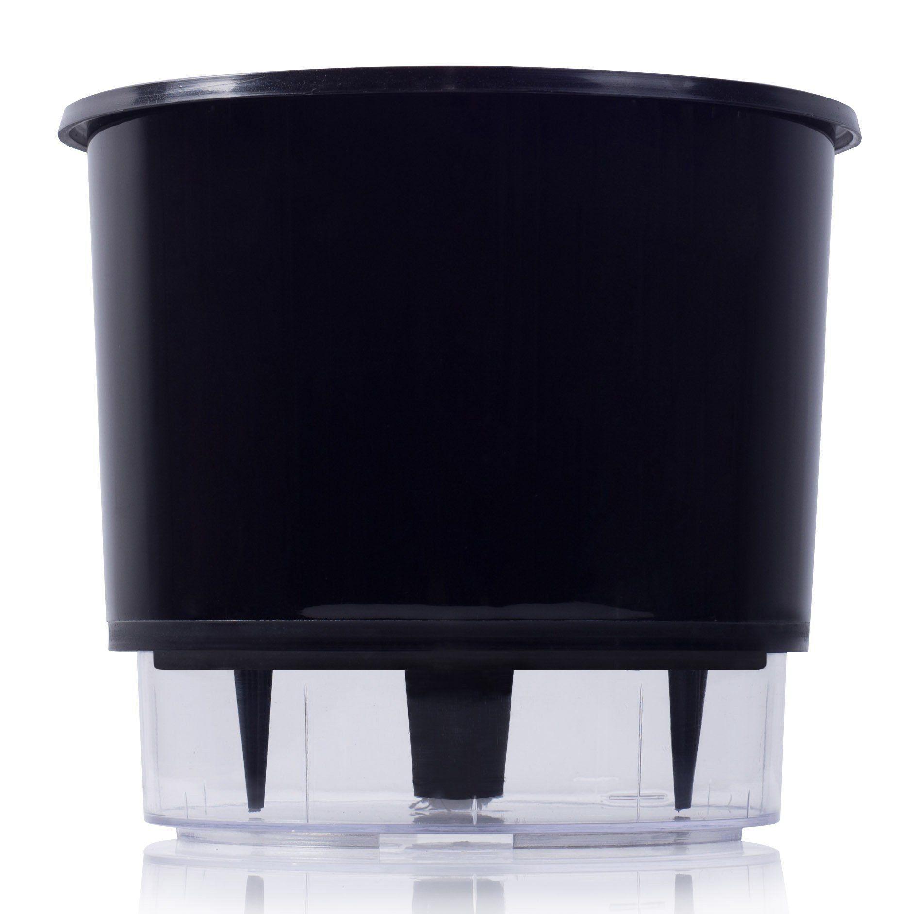 Kit Completo para plantio de Maranta Pavão ou Calathea Makoyana com vaso autoirrigável Médio Preto