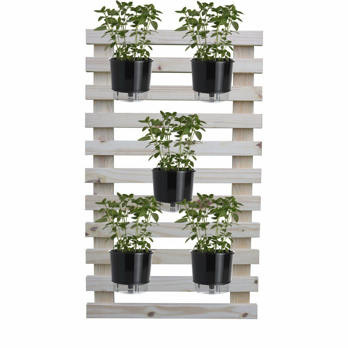 Kit Horta Vertical 100cm x 60cm + 5 Vasos + 5 Argilas + 5 Substratos + 5 Suportes