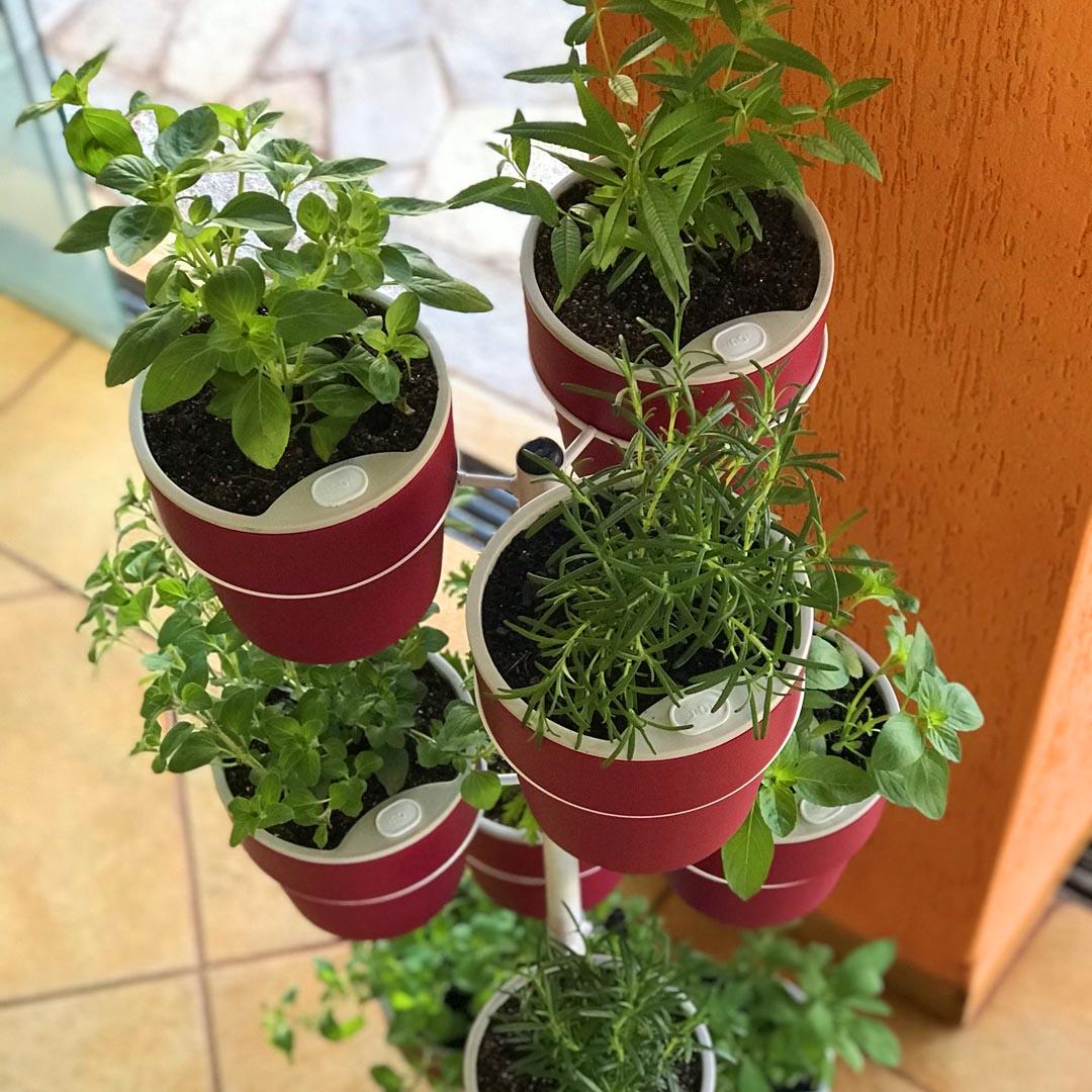 Kit Horta Vertical 10 Vasos Marsala Linha plantar e Suporte de Chão Branco