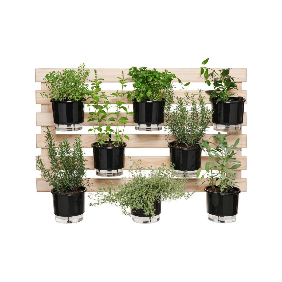 Kit Horta Vertical 8 Vasos Preto 60cm x 100cm Acompanha: Treliça + Vasos + Suportes + Substratos + Sementes