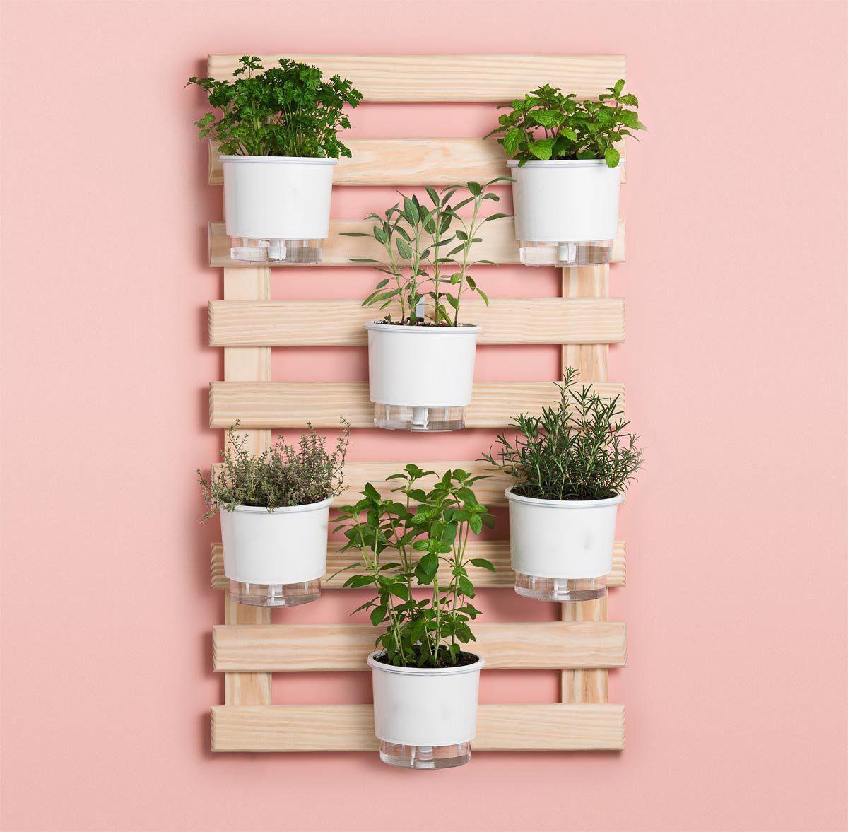 Kit Horta Vertical 6 Vasos Brancos 100cm x 60cm Acompanha: Treliça + Vasos + Suportes + Substrato + Sementes
