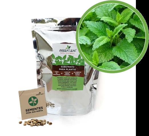 Kit para Plantio de Erva Cidreira Green Leaf