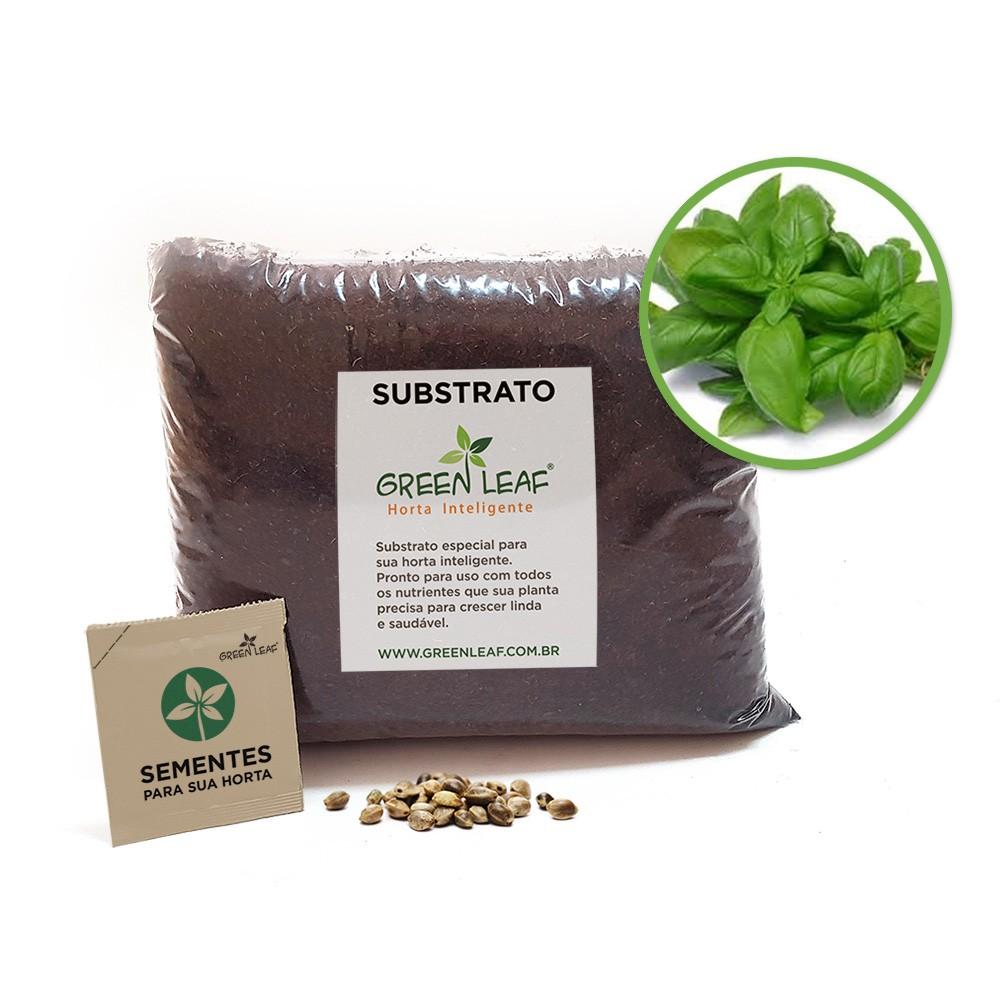 Kit para Plantio de Manjericão Gennaro de Menta Green Leaf