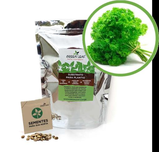 Kit para Plantio de Salsa Crespa Green Leaf