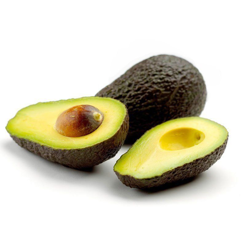 Muda de Abacate Avocado Anis feita de enxerto