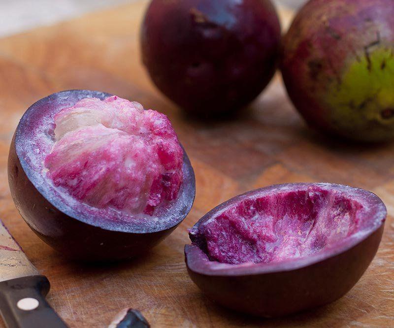 Muda de Abiu Roxo ou Caimito Roxo feita de semente