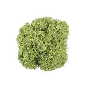 Musgo Ecológico artificial Verde 100g