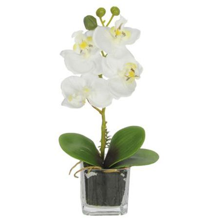 Orquídea Phalaenopsis artificial Branca com Vaso de Vidro X5 21cm - 36686001