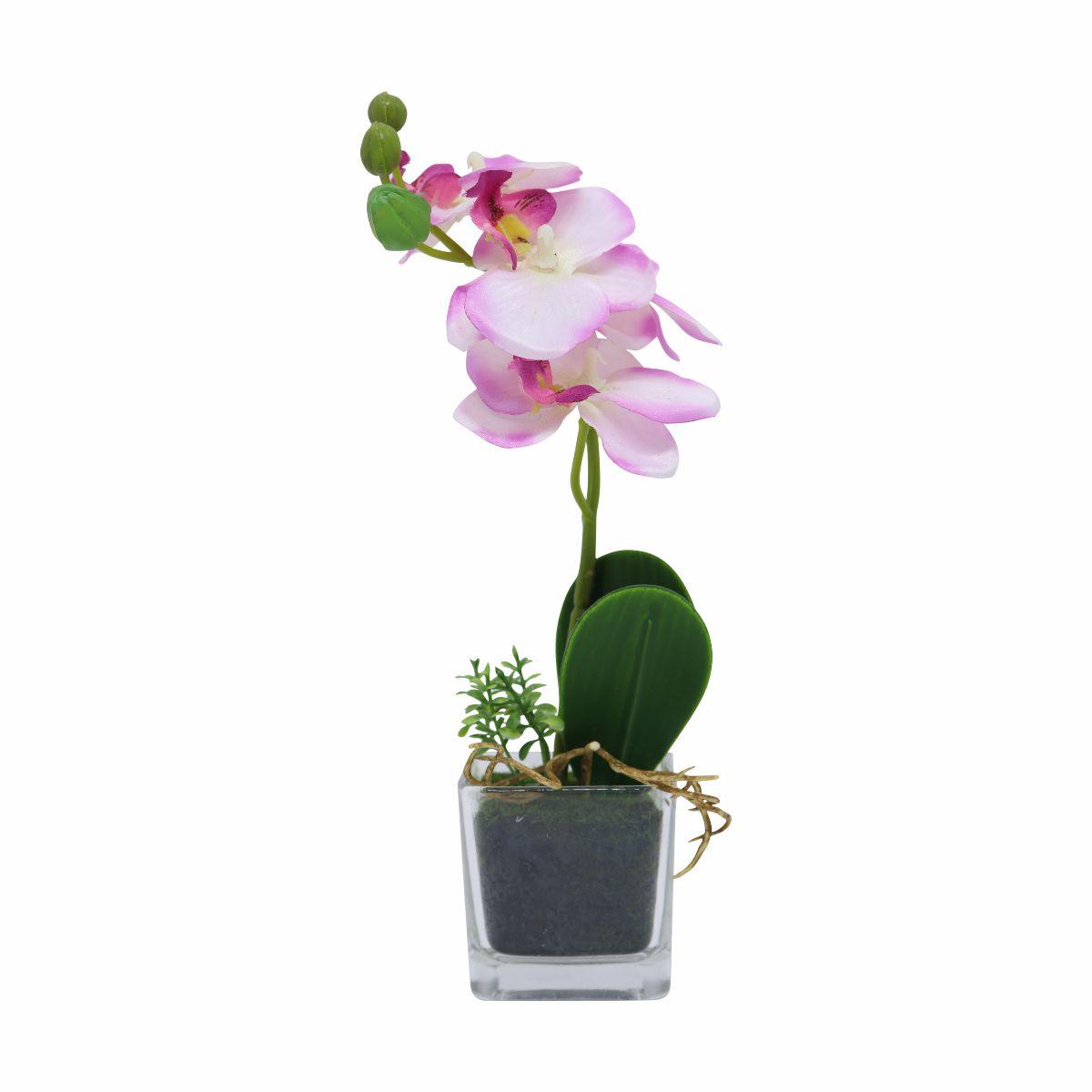 Orquídea Phalaenopsis artificial Rosa com Vaso de Vidro X5 21cm - 36686001R