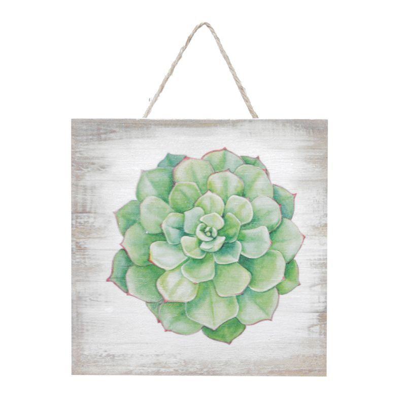 Quadro Decorativo de Madeira Suculenta Elegans Verde 15cm x 15cm - 42607