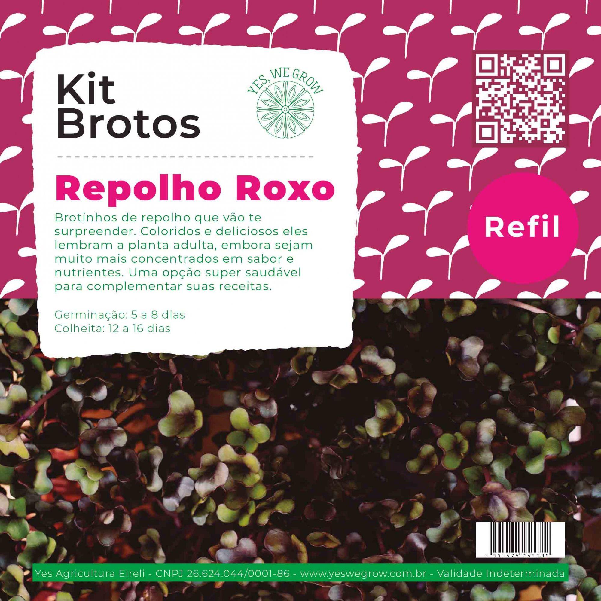 Refil para Kit Brotos Repolho Roxo