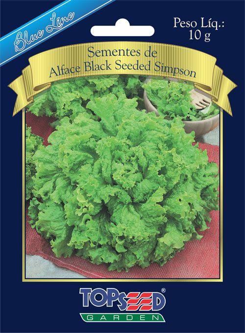 Sementes de Alface Black Seeded Simpson 10g - Topseed Blue Line