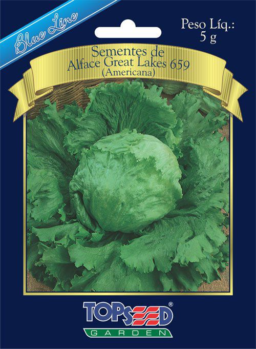 Sementes de Alface Great Lakes 659 (Americana) - Topseed Blue Line