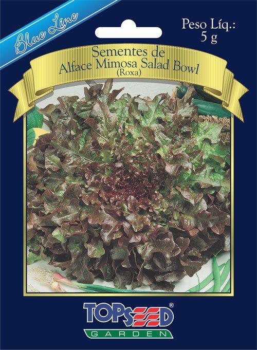 Sementes de Alface Mimosa Salad Bowl (Roxa) - Topseed Blue Line