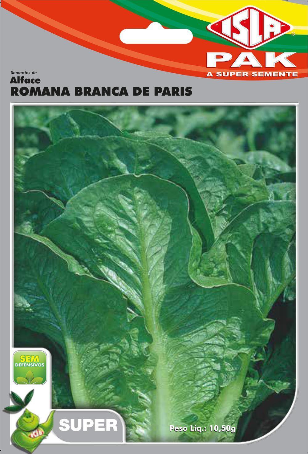 Sementes de Alface Romana Branca de Paris 10,5g  - Isla Superpak