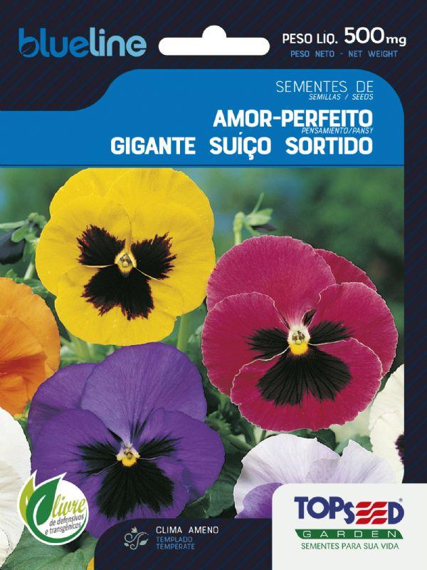 Sementes de Amor Perfeito Gigante Suíço Sortido 500mg - Topseed Blue Line