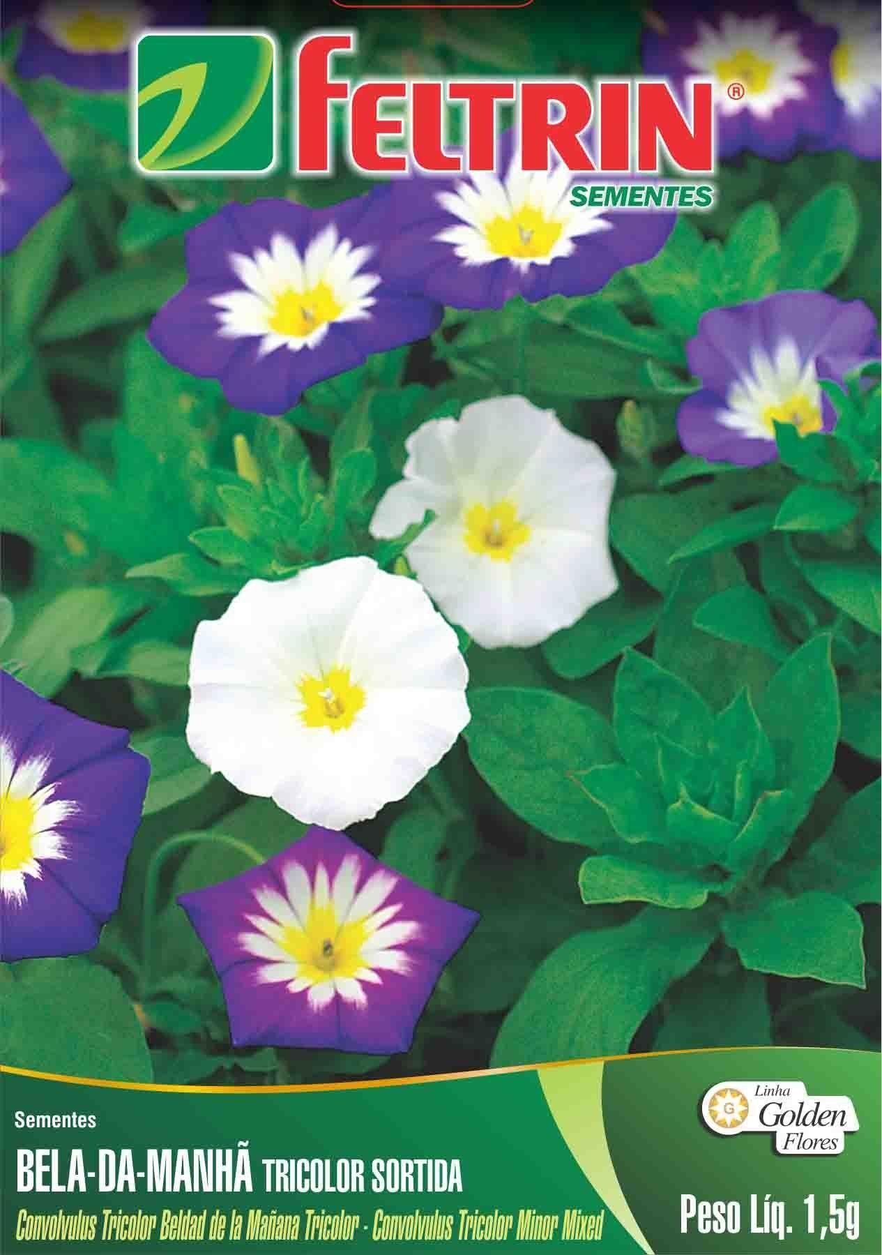 Sementes de Bela-da-manhã Tricolor Sortida Feltrin - Linha Golden Flores