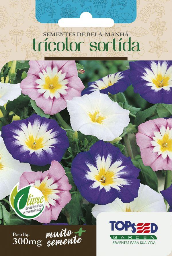 Sementes de Bela Manhã Tricolor Sortida 300mg - Topseed Linha Tradicional