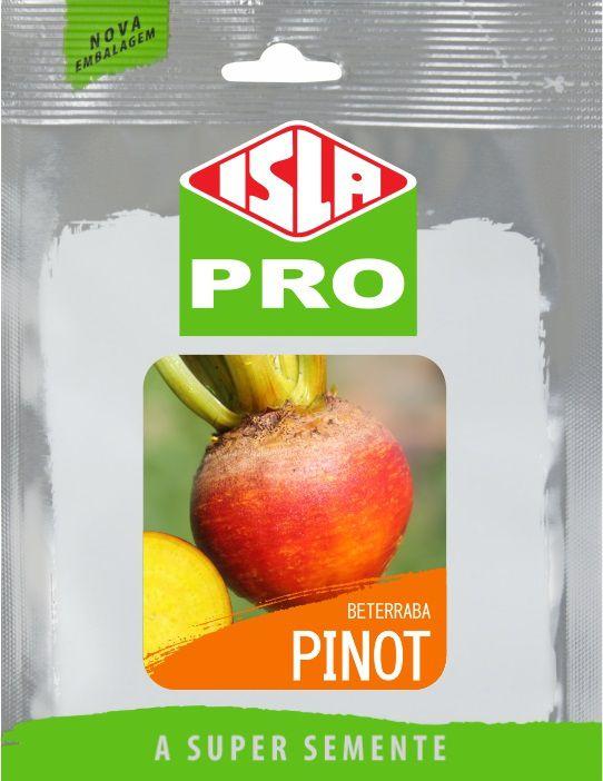 Sementes de Beterraba Pinot Envelope com 10g - Isla Pro