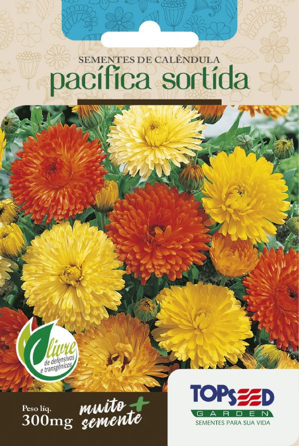 Sementes de Calêndula Pacífica Sortida 300mg - Topseed Linha Tradicional Flores
