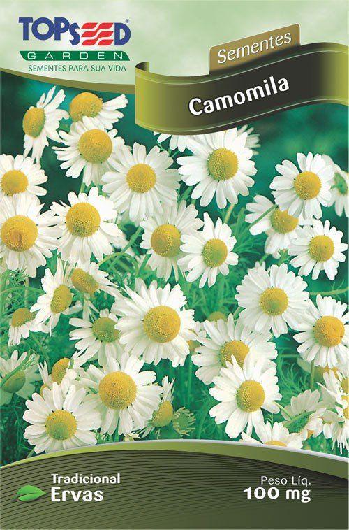 Sementes de Camomila Linha Tradicional Ervas Topseed