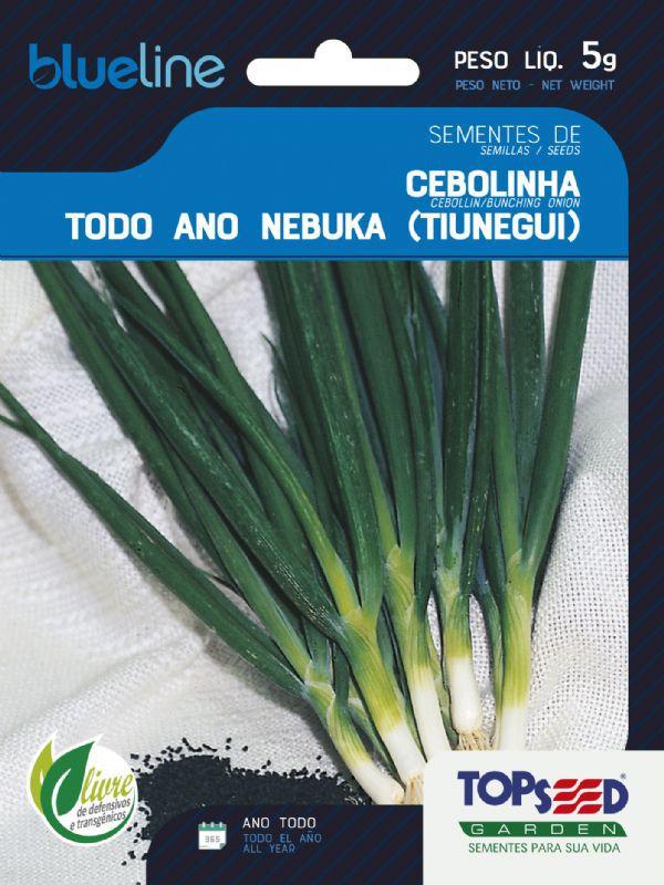 Sementes de Cebolinha Todo Ano Nebuka (Tiunegui) 5g - Topseed Blue Line