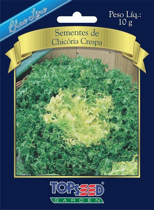 Sementes de Chicória Crespa 10g - Topseed Blue Line
