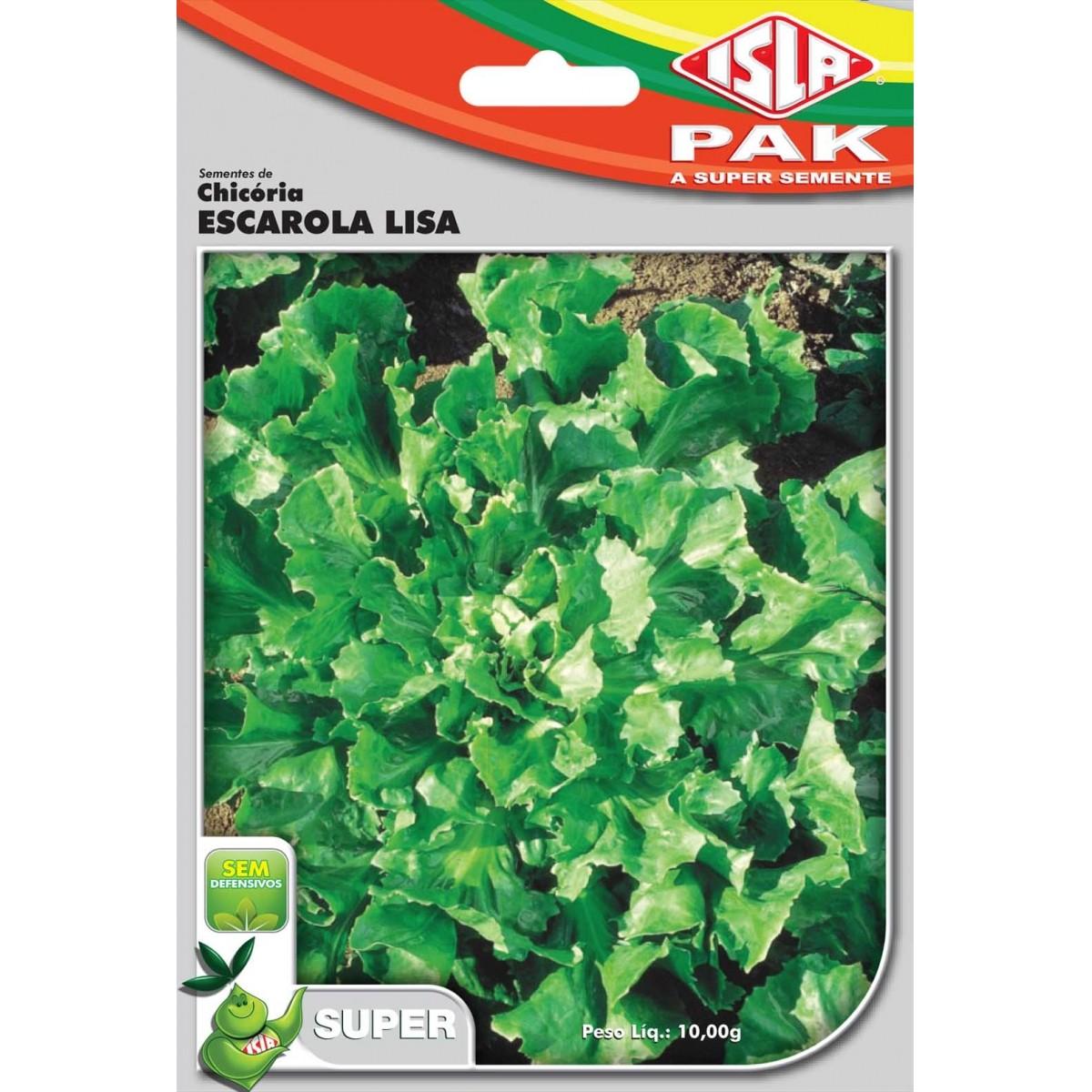 Sementes de Chicória Escarola Lisa - Isla Superpak