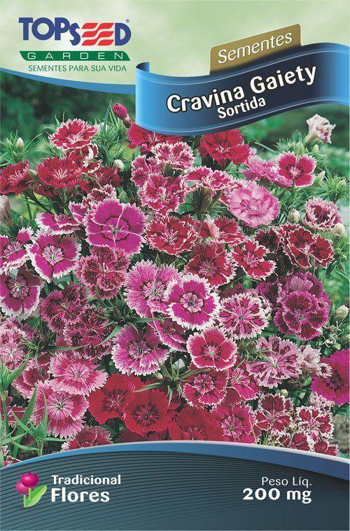 Sementes de Cravina Gaiety Sortida 200mg - Topseed Linha Tradicional Flores