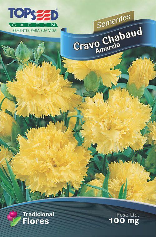 Sementes de Cravo Chabaud Amarelo 100mg - Topseed Linha Tradicional Flores