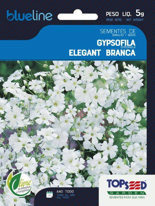 Sementes de Gypsofila Elegant Branca 5g - Topseed Blue Line
