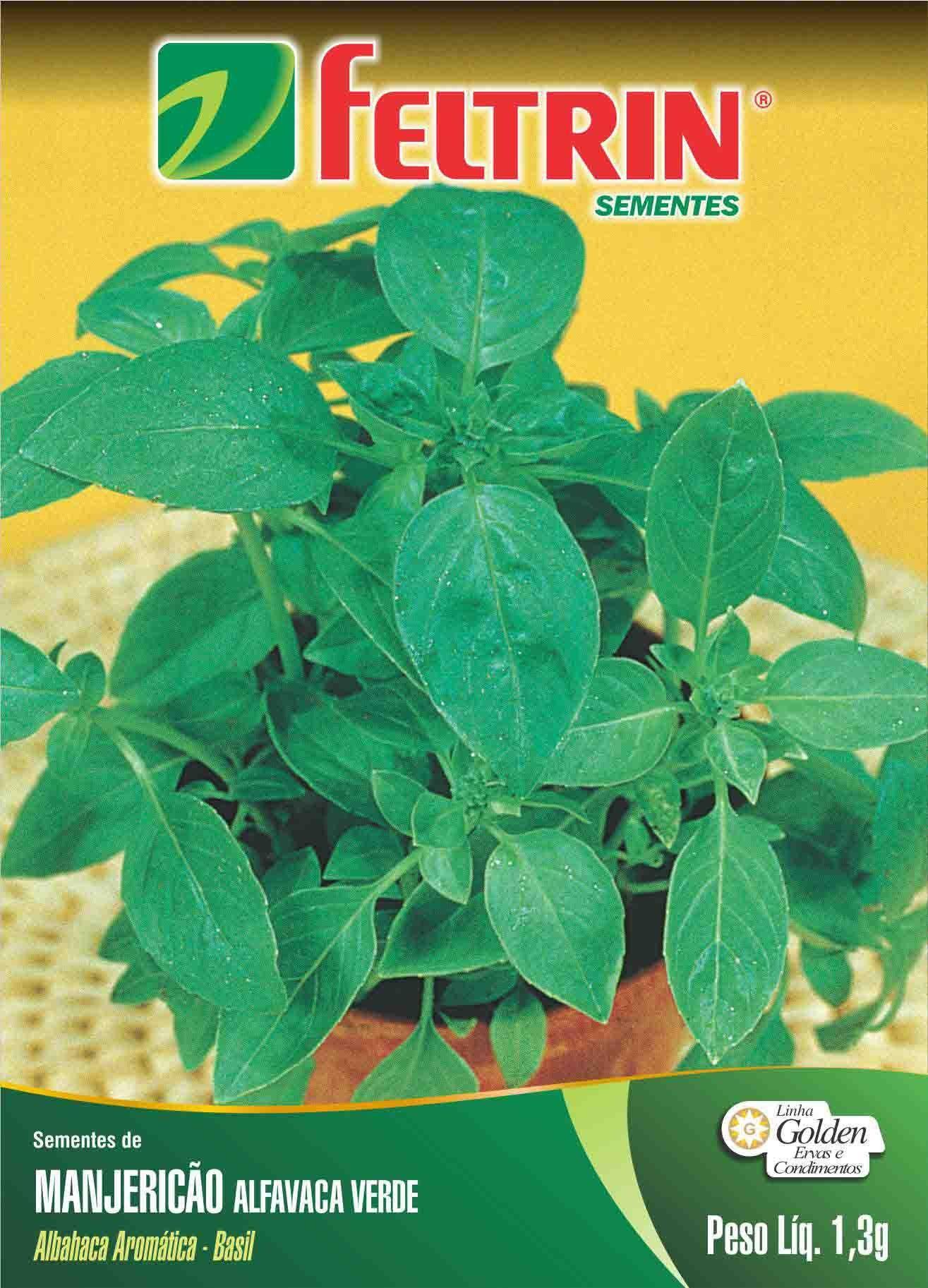 Sementes de Manjericão Alfavaca Verde - Feltrin Linha Golden