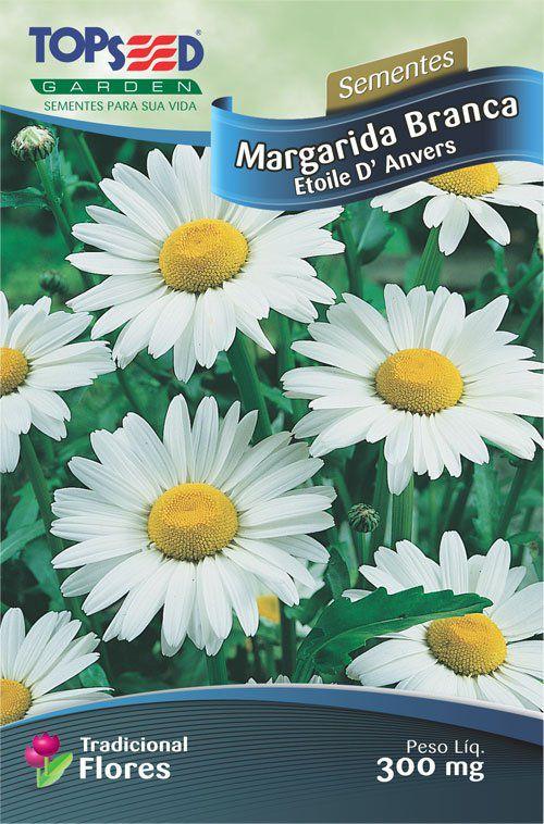 Sementes de Margarida Branca Etoile Danvers - Topseed