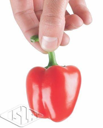 Sementes de Mini Pimentão Kaolin Híbrido Importadas Envelope com 10 sementes (74mg) - Isla Pro