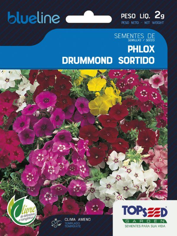 Sementes de Phlox Drummond Sortido 2g - Topseed Blue Line