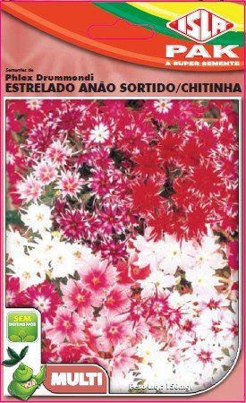 Sementes de Phlox Drummondi Estrelado Anão Sortido/ Chitinha - Isla Multi