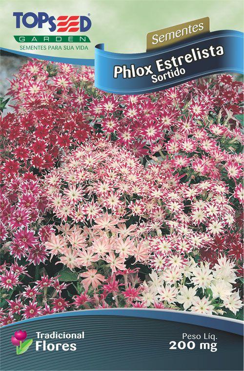 Sementes de Phlox Estrelitsia Sortida 200mg - Topseed Linha Tradicional