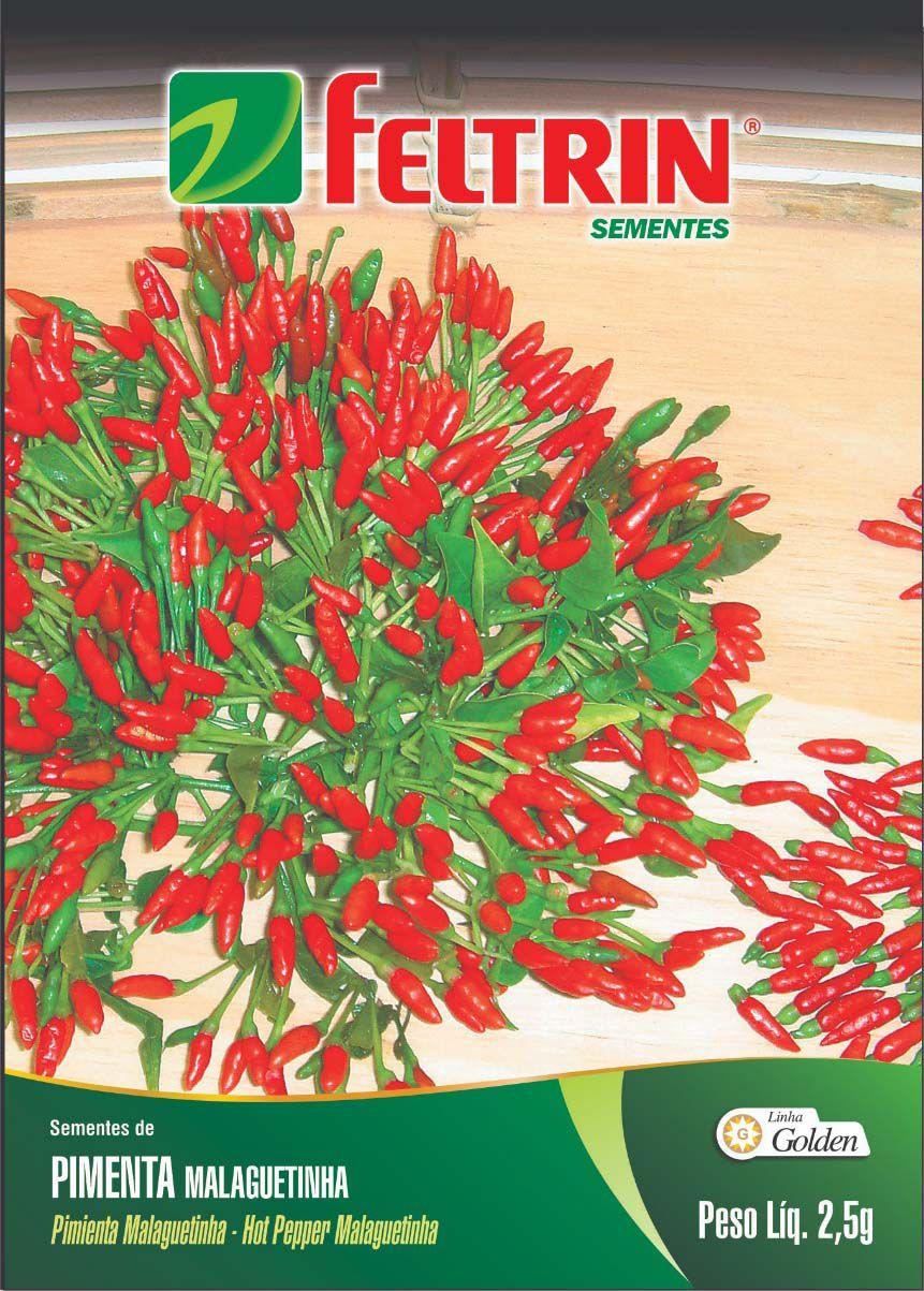 Sementes de Pimenta Malaguetinha - Feltrin Linha Golden