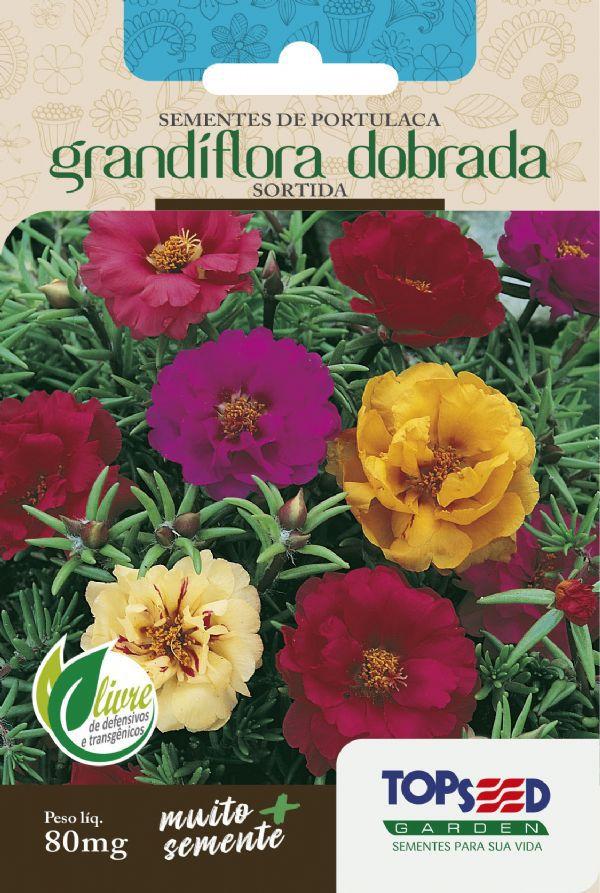 Sementes de Portulaca Grandiflora Dobrada Sortida 100mg - Topseed Linha Tradicional