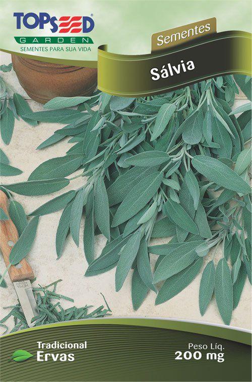 Sementes de Sálvia Linha Tradicional Ervas - Topseed