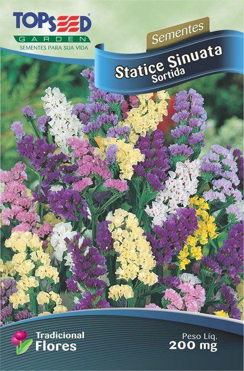 Sementes de Statice Sinuata Sortida - Topseed Linha Tradicional Flores