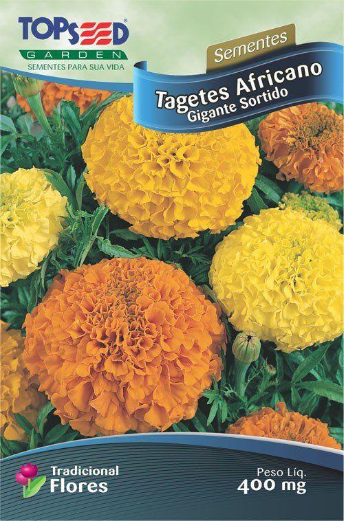 Sementes de Tagetes Africano Gigante Sortido -  Topseed Linha Tradicional Flores