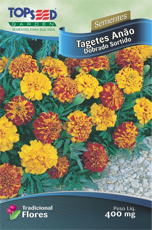 Sementes de Tagetes Anão Dobrado Sortido 400mg - Topseed Linha Tradicional Flores